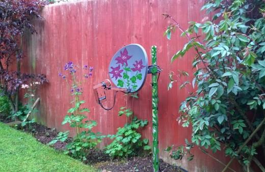 camouflaged garden sky dish
